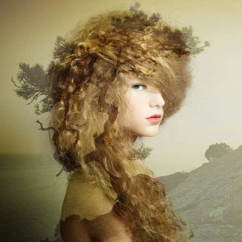 エレガントなヘアスタイルの女性
