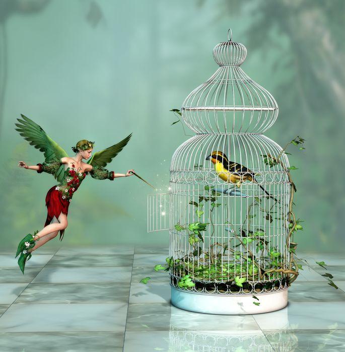 妖精が、鳥かごのカギをあける