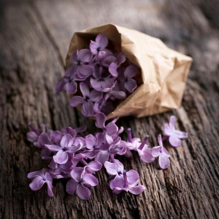 紙袋の中に紫のライラック