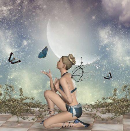 月の下に妖精