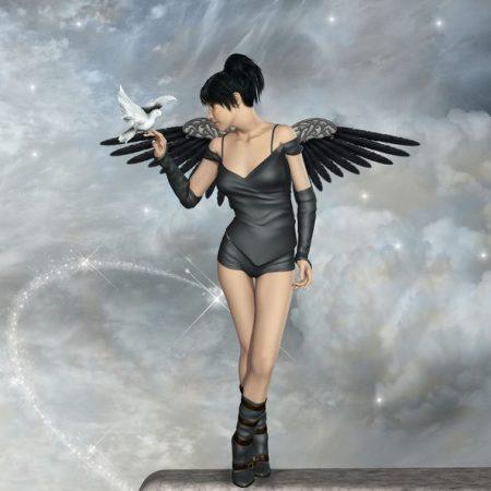 黒い翼の天使と白い鳥