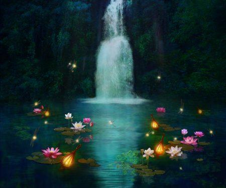 幻想的な水と睡蓮の風景