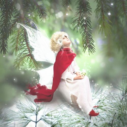 冬の松の下に、妖精