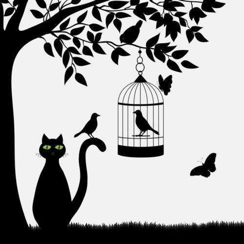 庭に猫と鳥かご