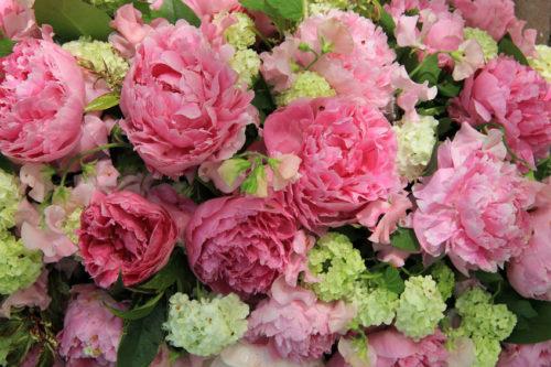 芍薬の花束