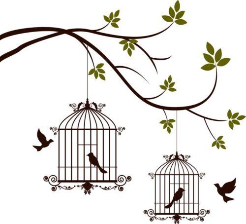 鳥と鳥かご
